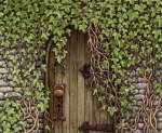 Une porte mystérieuse cache un magnifique secret...